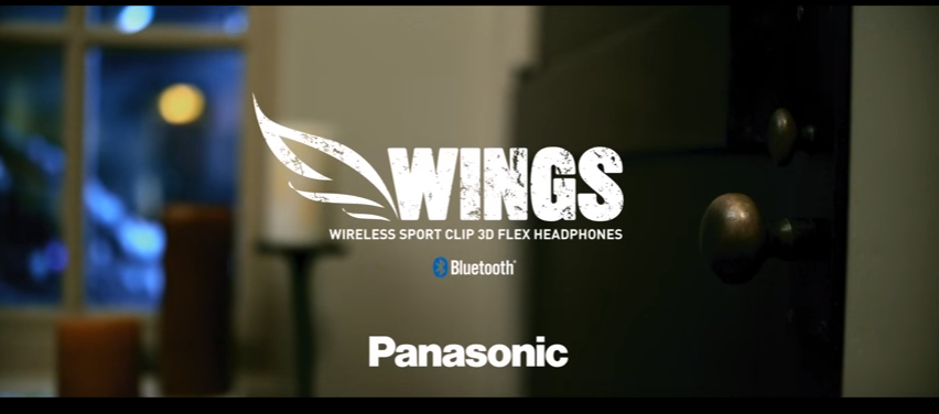 Panasonic WINGS Commercial